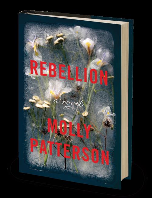 3D-Rebellion